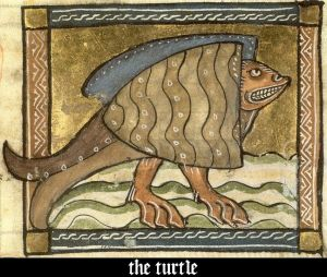 medieval_bestiary_bad_turtle