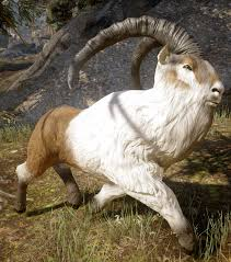 Dragon Age Inquisition - Ram